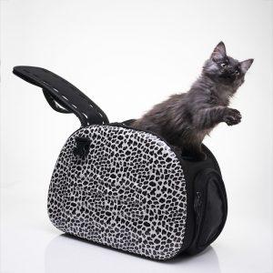 kaxe-catbag-cat-jlphoto-se